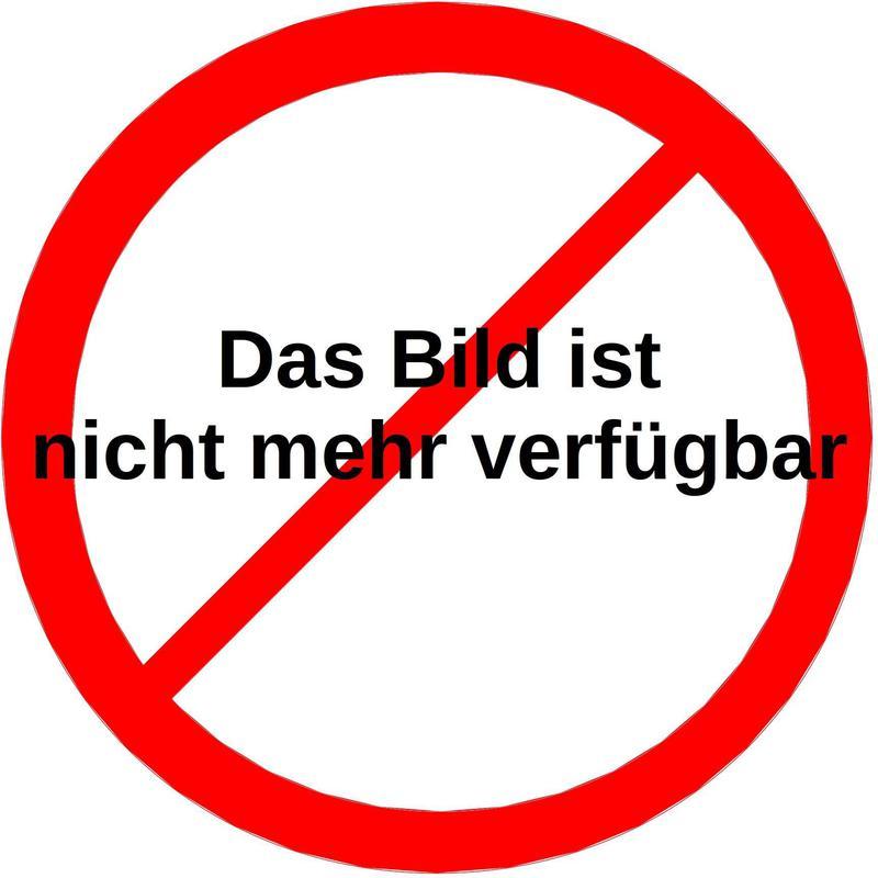 3 Neubaudoppelhäuser sowie 3 Einfamilienhäuser - nahe dem Bisamberg /  / 2100Korneuburg / Bild 7