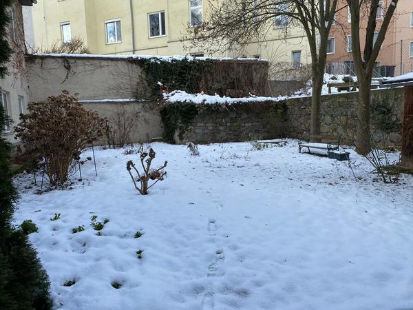 AUSSENANSICHTEN - Innenhof