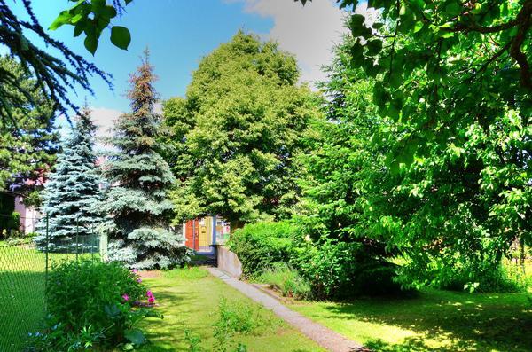 TITELBILD - Gartenansicht1.jpg