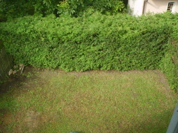 AUSSENANSICHTEN - Klein aber Fein - Eigengarten
