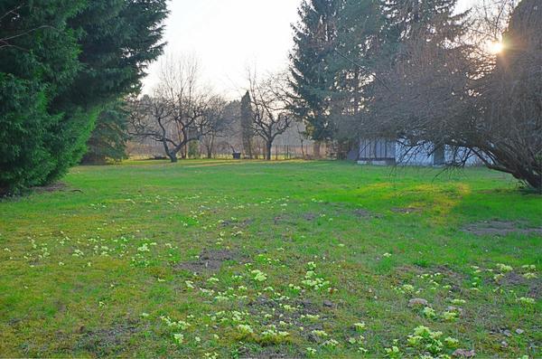 AUSSENANSICHTEN - Garten1_Neunkirchen