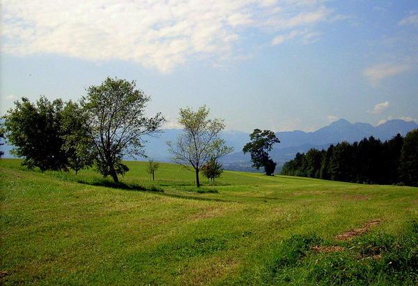 Herrlicher Baugrund mit wunderschönem Panoramablick!