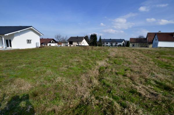 AUSSENANSICHTEN - Von Wald zu Grundstück