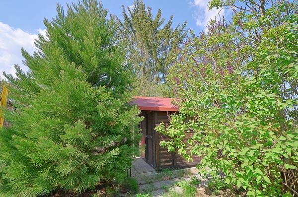 INNENANSICHTEN - Gartenhütte