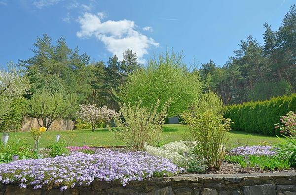 AUSSENANSICHTEN - Garten_Waldrand_Oberdanegg