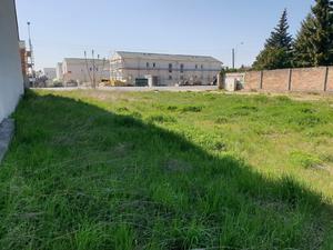 Baugrundstück (ca. 648 m²) für EFH in Strasshof