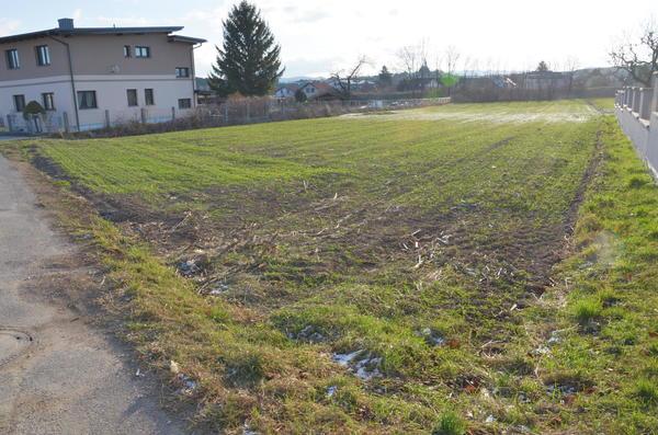 AUSSENANSICHTEN - Grundstück Strassenseite