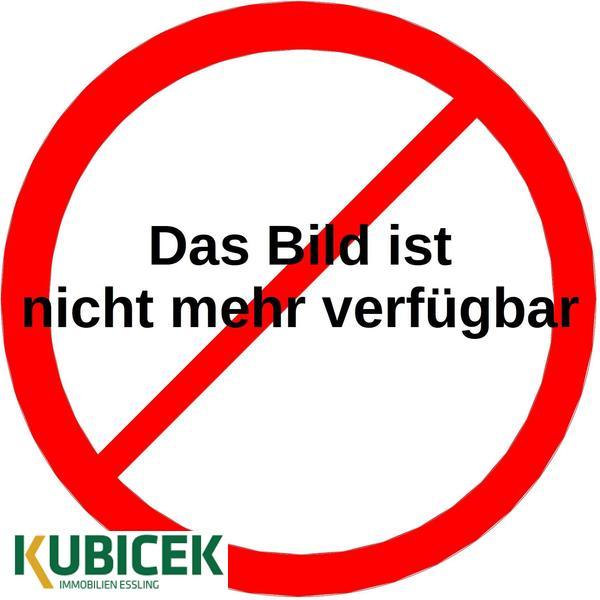 TITELBILD - Aussenvisualisierung_Doppelhaushaelften_Obernberg_am_Inn